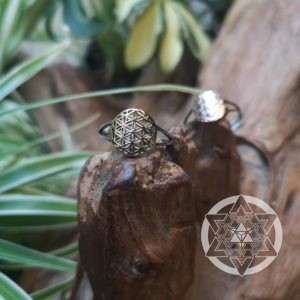 Seed of Life Ring (14k Gold)