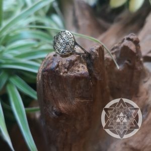 Seed of Life Ring (925 Silver)