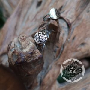 Seed of Life Ring (14k Rose Gold)