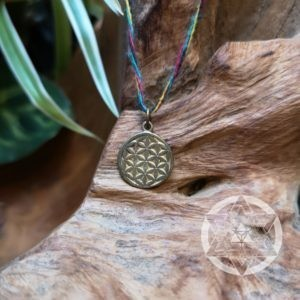 Seed of Life Brass Pendant (XS) for Baby steps in Creating the New