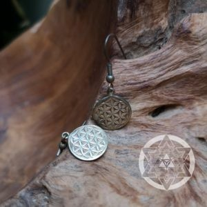 Seed of Life Earrings (Brass)