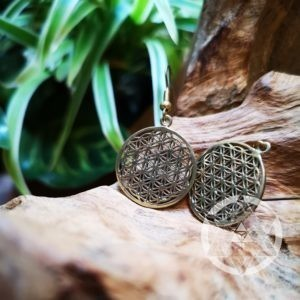 Flower of Life Earrings (Brass)